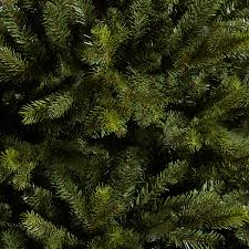buy john lewis brunswick spruce christmas tree 7ft john lewis