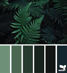 color nature nature images color palette green and inspiration