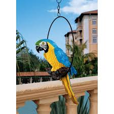amazon com design toscano polly in paradise parrot sculpture on