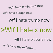 Love Hate Meme - wtf i hate x now know your meme