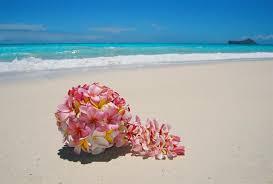wedding flowers oahu hawaii s tropical flowers plumeria flower wedding bouquet