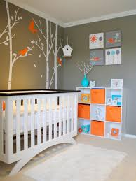 Owl Curtains For Nursery by Nursery Colors For Boys Pictures Options U0026 Ideas Hgtv