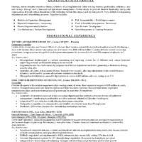retail sales manager resume examples 33 professional hotel sales