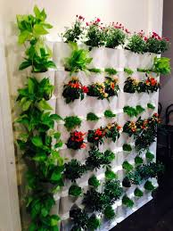 vertical gardening brings your walls to life minigarden us
