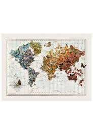 Monarch Migration Map Imaginenations Butterfly Migration Map From San Francisco By Park