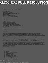 bunch ideas of how to write academic cover letter also letter