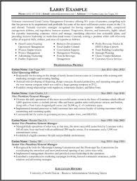 executive summary for resume examples gallery of executive summary format example business plan