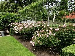 garden tour u2013 pashley manor wellywoman