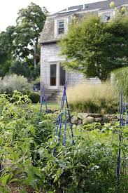 246 best potager images on pinterest vegetable garden veggie
