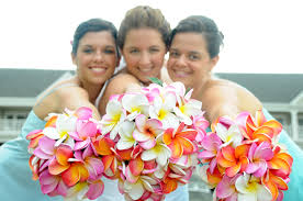 wedding flowers hawaii hawaiian flowers bridal bouquet wedding flowers plumeria