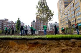 philadelphia parks curbed philly