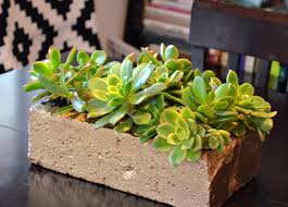 Make A Brick Succulent Planter - stylish diy projects with bricks and pavers