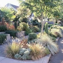 90 best drought tolerant gardens images on pinterest landscaping