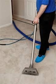 Professional Area Rug Cleaning Carpet Cleaning Maple Grove Mn Carpet And Area Rug Cleaning Experts
