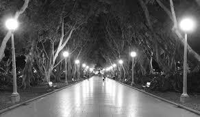 park lights francisvfrancis