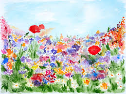 summer flowers in garden watercolor hand painted stock photo