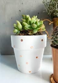diy for less decorative succulent planters u2014 me and mr jones