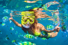 Florida Snorkeling images The 3 best snorkeling tours in key west outside pursuits jpg