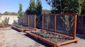 pergola vegetable garden trellis charming vertical vegetable