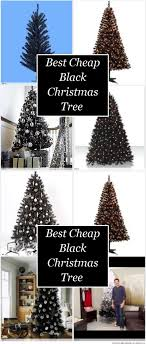 best cheap black tree holidays and important events