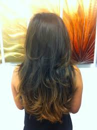 feathered back hairstyles for women feather cut hairstyle for long hair back view hair