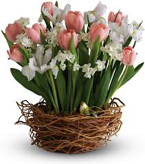 Birth Flowers By Month - sayville florist sayville ny flower shop sayville house of flowers