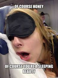 Sleeping Beauty Meme - the 20 funniest pictures of people sleeping in public gallery wwi