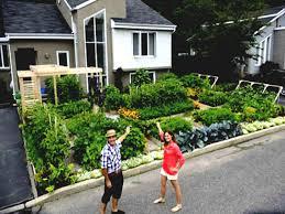small urban vegetable garden front yard backyard design ideas