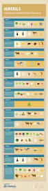 best 25 what are minerals ideas on pinterest what are healthy