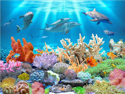 3d wallpaper custom photo mural underwater dolphin coral landscape 3d wallpaper custom photo mural underwater dolphin coral landscape decoration painting 3d wall murals wallpaper for walls 3 d living room movie wallpapers