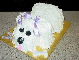 dog birthday cake dog birthday cake photos png