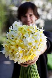 deliver flowers delivery policy hilo hi florist same day flower delivery for