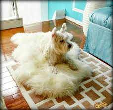 fur accents soft faux fur sheepskin pelt rug shaggy shag carpet