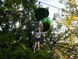 survives 25 foot fall from six flags sky ride in n y