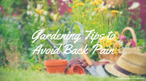 chiropractic gardening tips for avoiding back pain the spinal centre