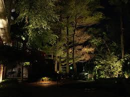Landscape Lighting Ideas Trees 24 Awesome Landscape Lighting Ideas Slodive
