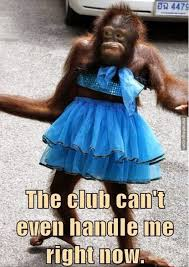 Sexy Monkey Meme - party tonight shaving optional http memebinge com sexy monkey