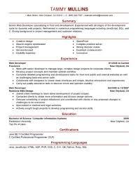 Programmer Resume Sample by Java Programmer Resume Specialist Wowknee