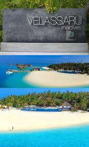 best 25 sun island resort maldives ideas on pinterest sun