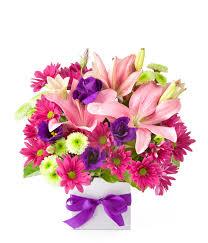 flowers online flowers from 39 easyflowers australia send flowers online
