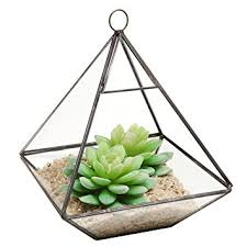 Hanging Succulent Planter by Amazon Com Hanging Clear Glass Prism Air Plant Terrarium
