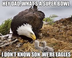 Philadelphia Eagles Memes - nfl memes on twitter another philadelphia eagles season ends