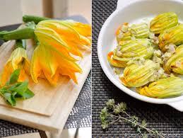 cuisiner fleurs de courgettes les fleurs de courgette farcies les cocottes moelleuses