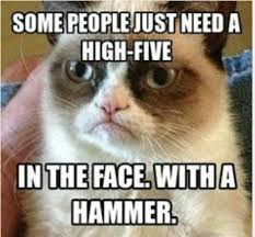 Monkey Face Meme - monkey meme some peole just need a high five in the face with a