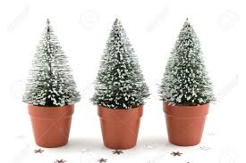 tiny artificial snow flecked evergreen trees in orange