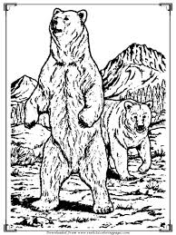 realistic lion coloring pages bear coloring pages for printable realistic coloring pages