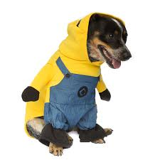 Dog Minion Halloween Costumes Minion Dog Costume Dog Costumes U0026 Clothes Pet Threads