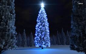 Blue Christmas Trees Decorating Ideas - christmas tree lights white cord in bodacious how to hang tree