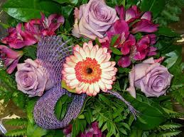 free images petal gift vase decoration romance pink flora