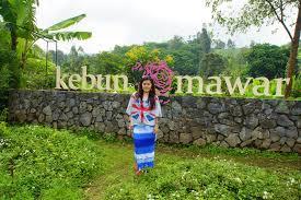 Rose Garden Layout by Kebun Mawar Rose Garden A Place For Goddess L1lysparrow